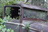 Very complete pickup truck cab stored in vintage car wrecking yard