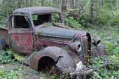 Restorable Dodge project pickup truck found in vintage car junk yard
