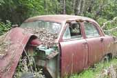 1950's Ford fordor sedan project car stored in vintage car wrecking yard