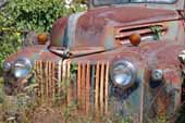 Awesome 1940's Ford farm truck parked at vintage car wrecking yard